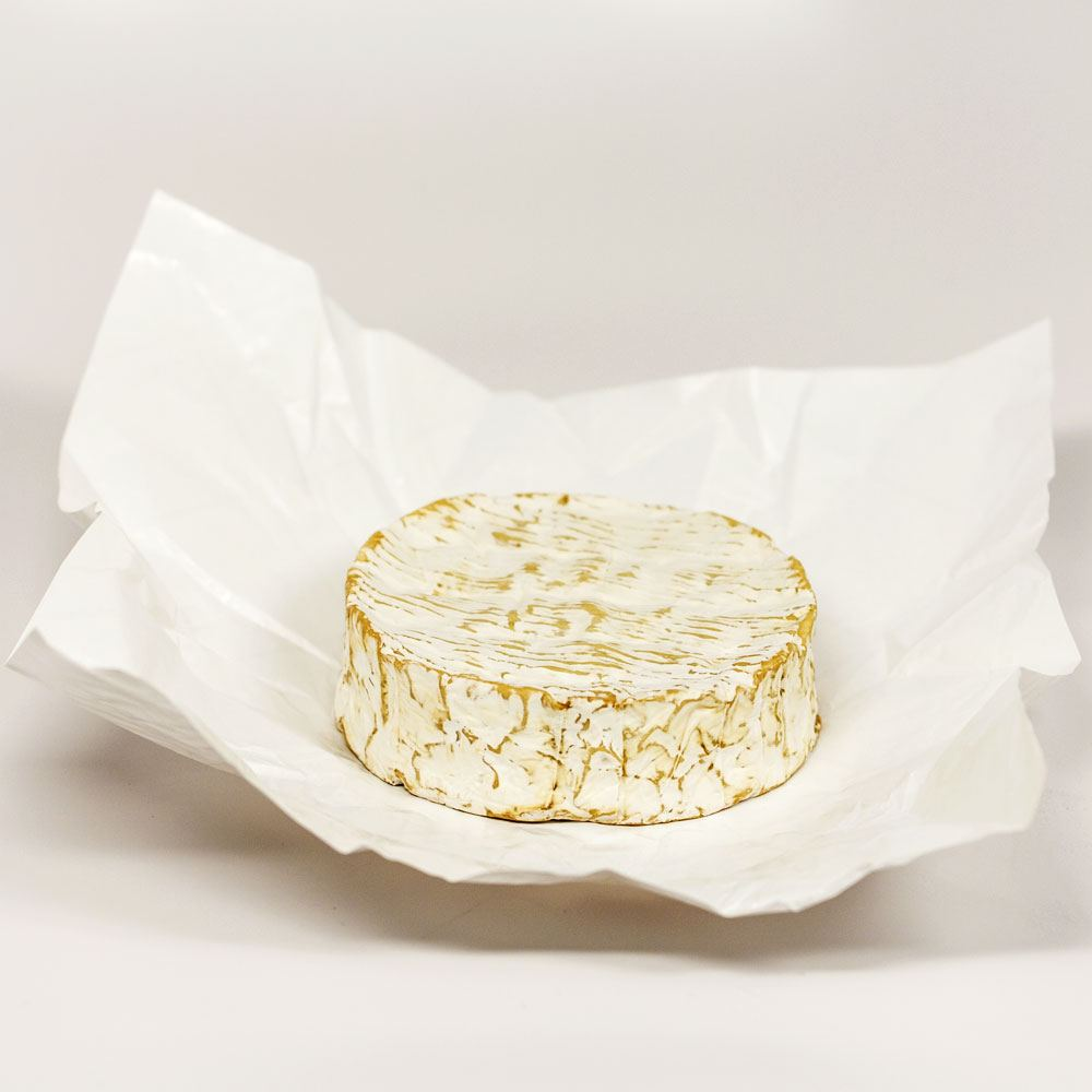 Cheese paper 1